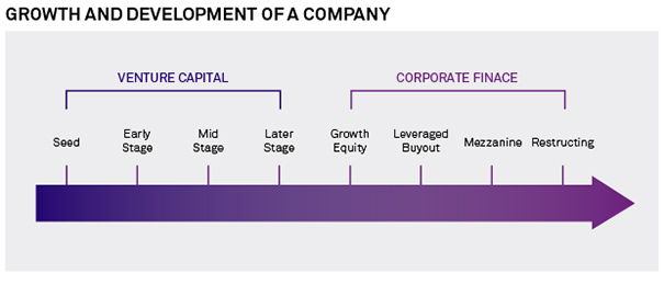 Growth and Development of A Company