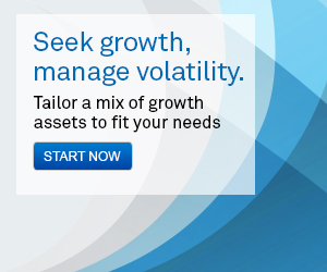 Seek growth, manage volatitlity