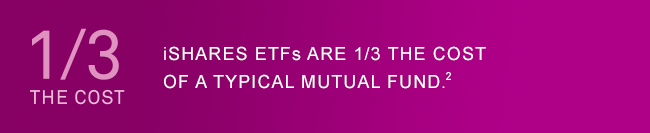1/3 the Cost of a typical mutual fund