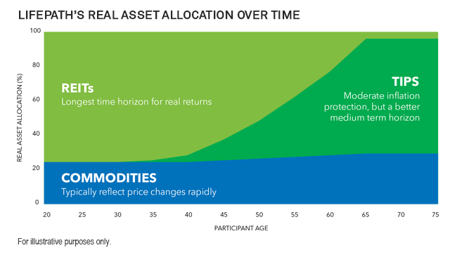 Lifepath's real asset allocation over time
