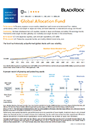 Global Allocation Monthly Insight